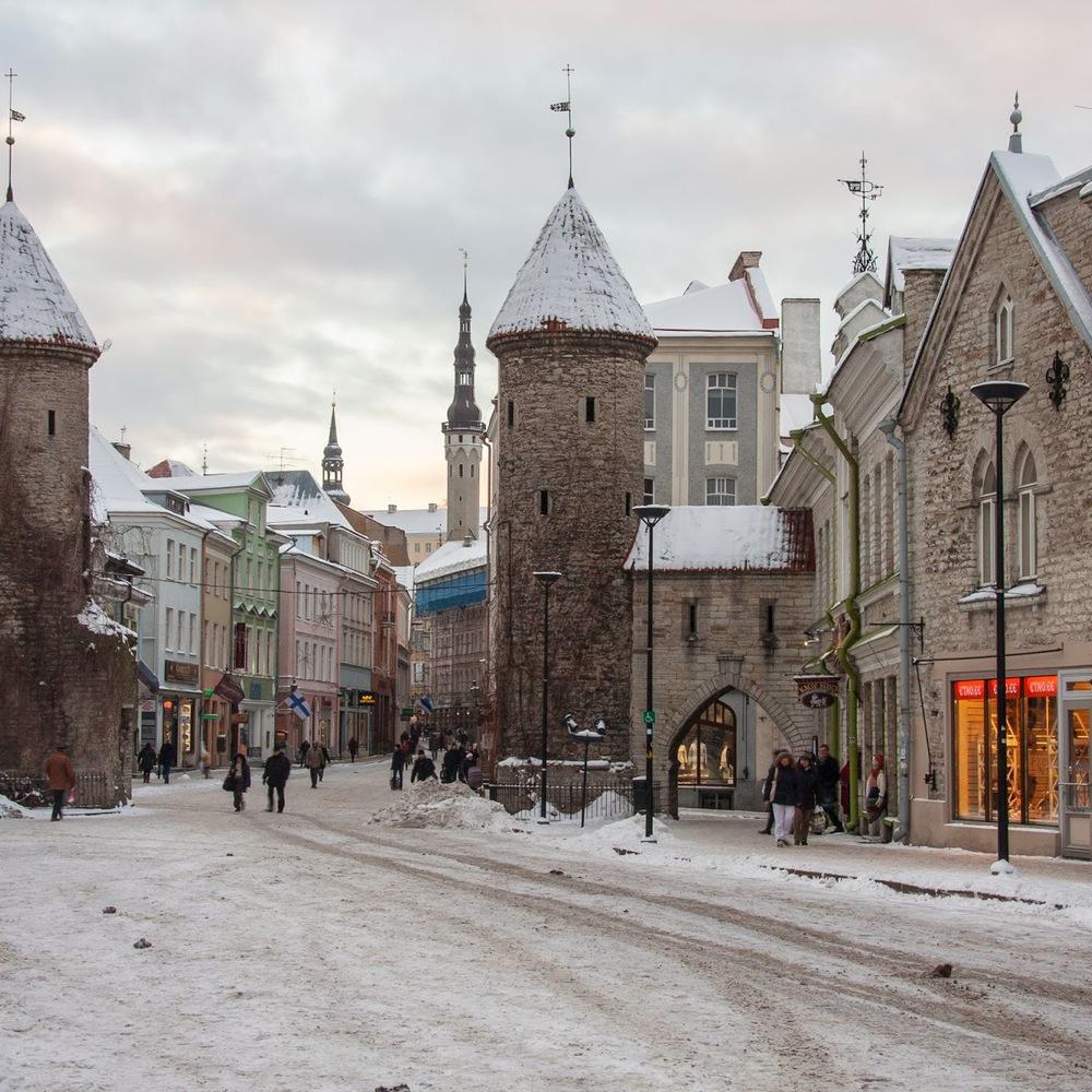 Firms Estonia